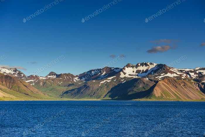 Mountains and volcanic lava sand dunes by the sea in Stokksness, Iceland. The brown bushes are