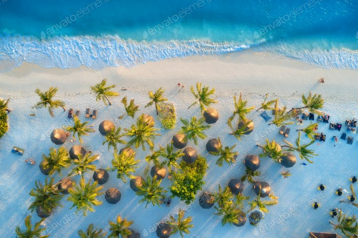 Aerial view of umbrellas, palms on the sandy beach