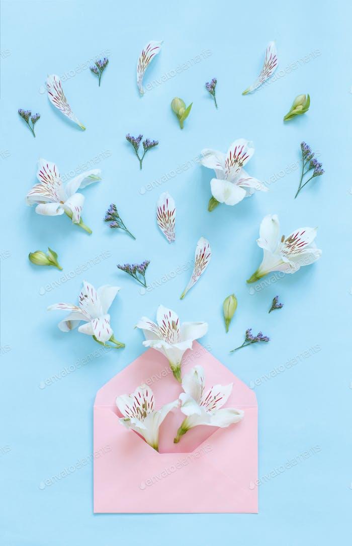Blumen und Umschlag auf einem hellrosa Hintergrund