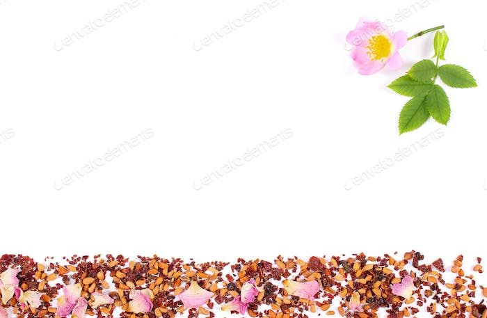 Dried wild rose petals and tea grains on white background, copy space for text