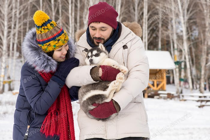 Asian Couple Playing with Husky Puppy