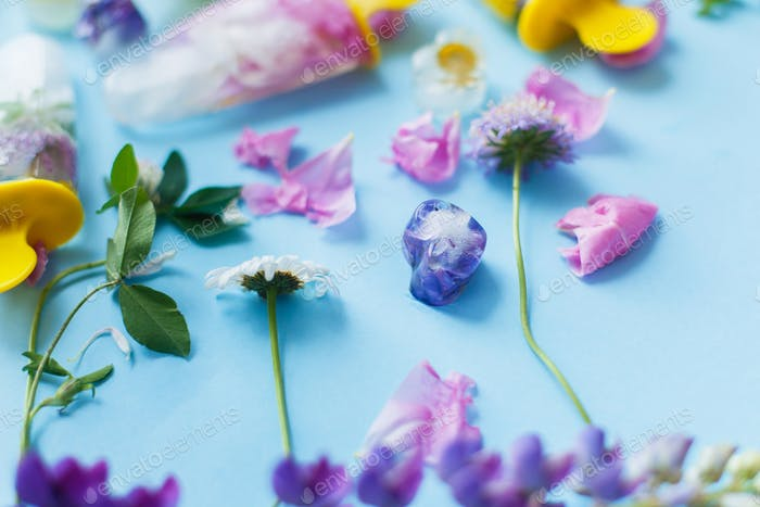 Colorful wildflowers in frozen popsicles and ice cubes