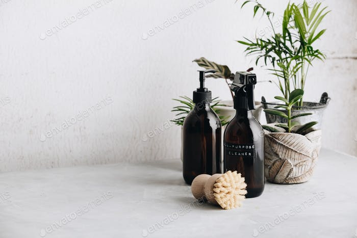 Various items and ingredients for eco home cleaning and house plants