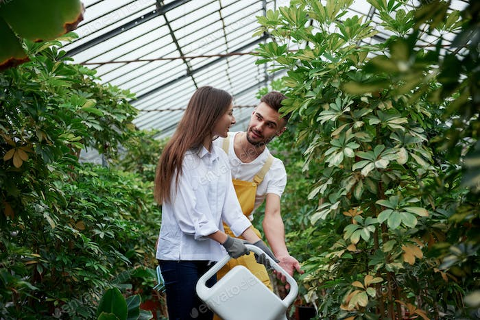 Having conversation. Young couple of workers in the greenhouse with water canister