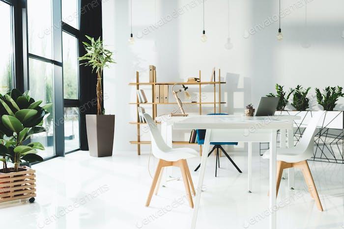 interior of beautiful modern office