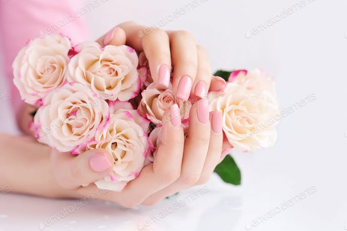 Hands of a woman with pink roses against white background