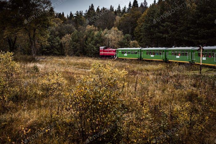 Retro Zug Reise durch Bieszczady Gebirge in Polen. Autum Saison. Stimmungsvolles und getöntes Bild