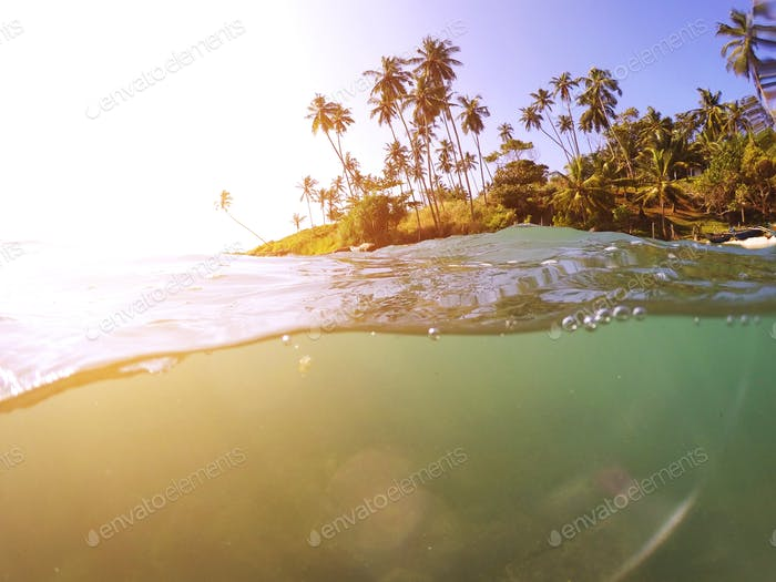 Tropical beach with palm trees and ocean wave
