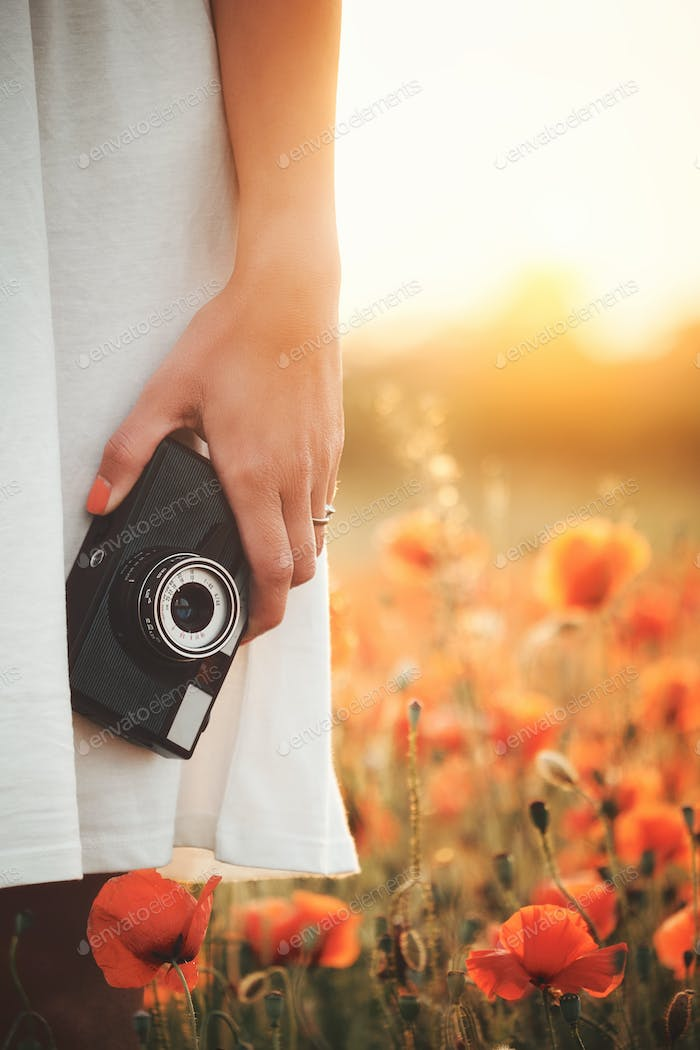 Vintage camera in woman hand on poppy field