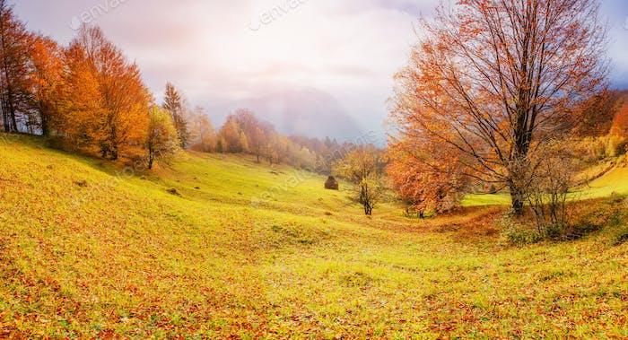 rock massif in the Carpathians. Carpathian, Ukraine, Europe