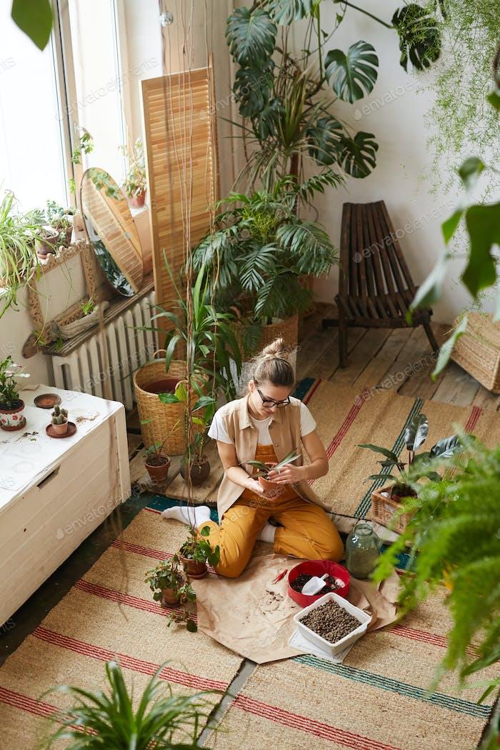Florist beschäftigt mit Ihr hobby