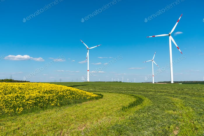 Windengines in the fields