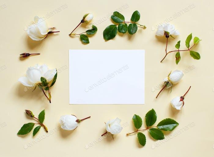 Blumen und weißen Papteron einen hellgelben Hintergrund