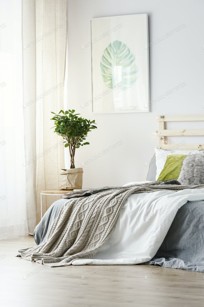 Poster above plant next to bed with grey blanket in minimal bedr