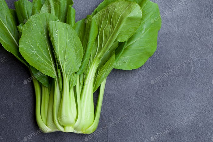 Bok Choy Fresh Salad. Grey Background. Copy Space. Top View.