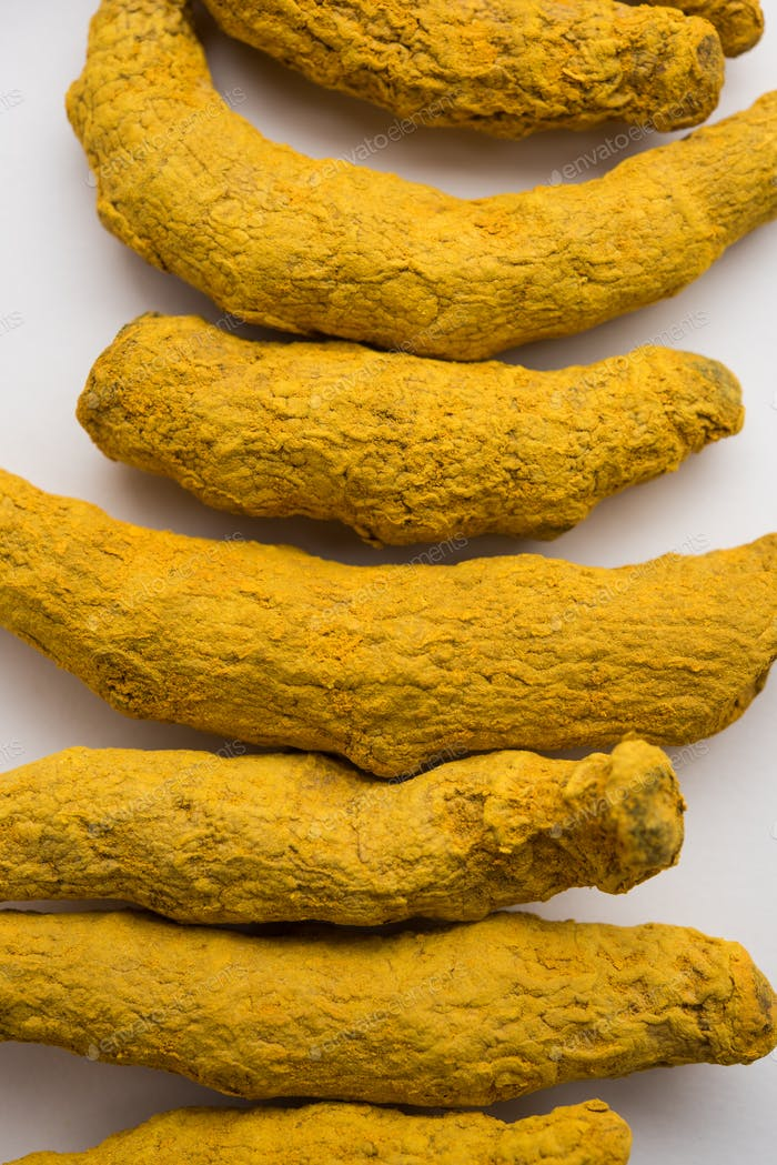 Haldi or Dried Turmeric Roots as a whole on white background