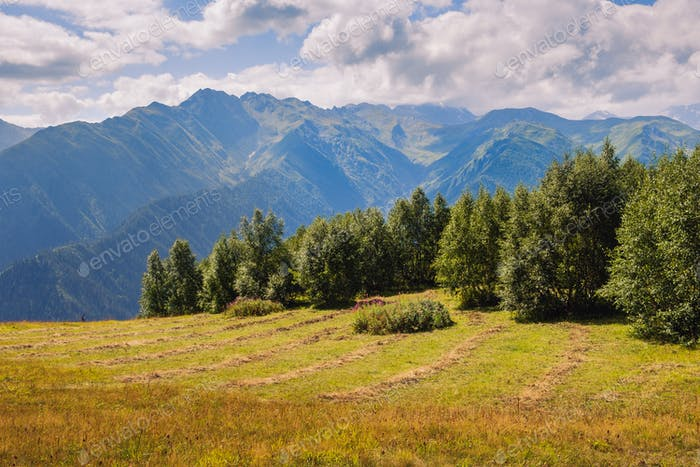 Landscape view of Caucasus mountains and meadows in Svaneti, Georgia