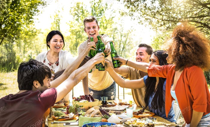 Young multiracial friends toasting at barbecue garden party