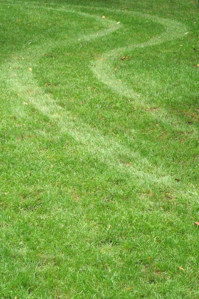 Reifenspur im Gras