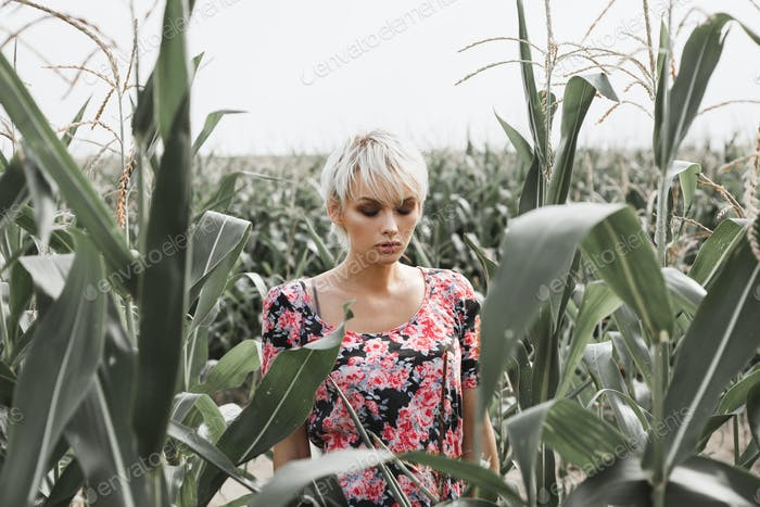 Girl between green leaves in a corn field