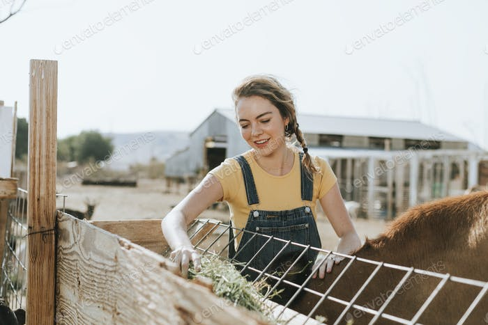 Woman taking care of animals, The Sanctuary at Soledad