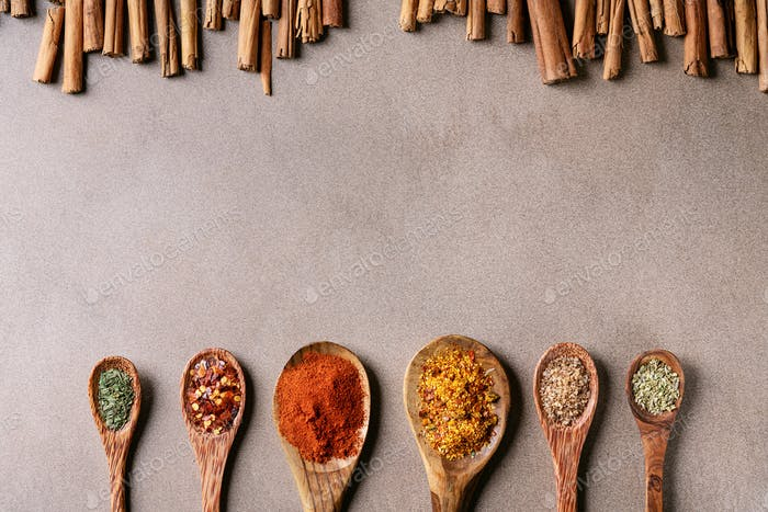 Variety of spices: on wooden spoons