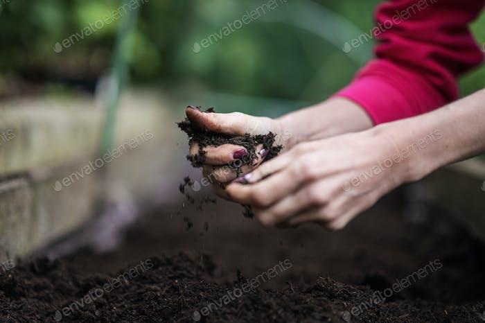 Imagen conceptual de la jardinería