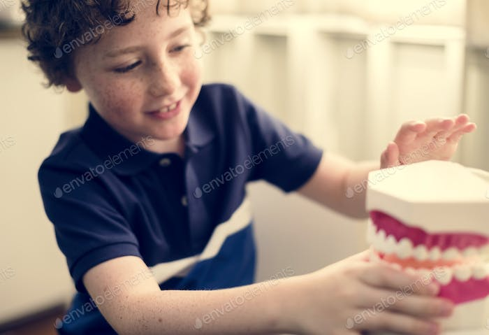 Young boy playing with a dental model