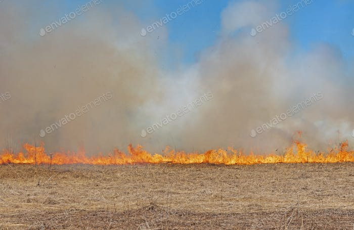 Fire Marching across a Prairie
