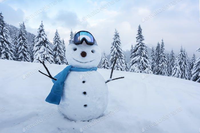 Funny snowman in ski glass
