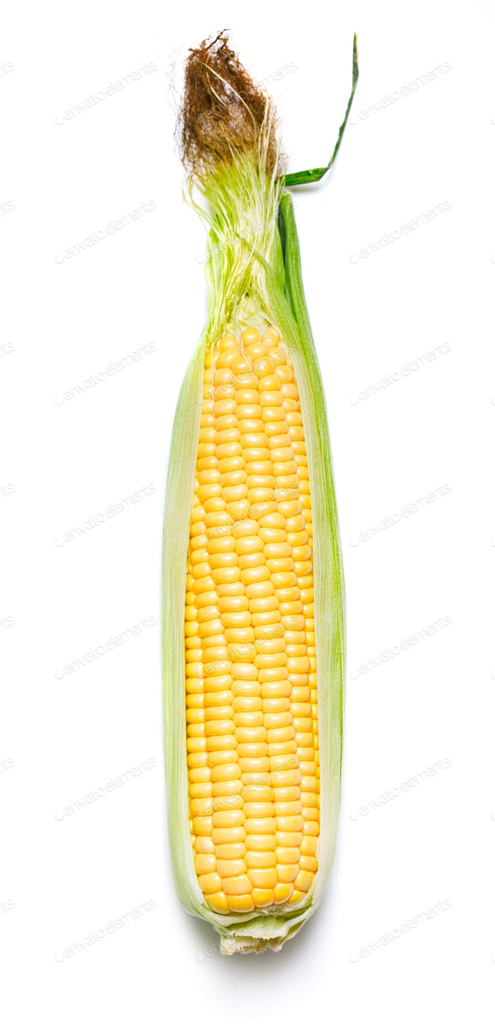 Thumbnail for corn cob