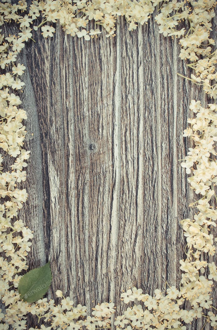 Vintage photo, Frame of elderberry flowers on rustic wooden board, copy space for text