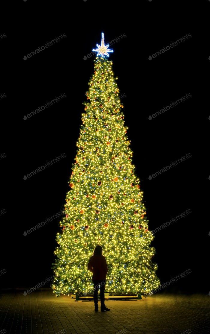Neujahr Tannenbaum und Silhouette der Person