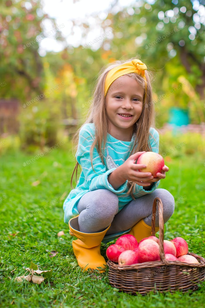 Little girl with basket of red apples in sunny autumn day