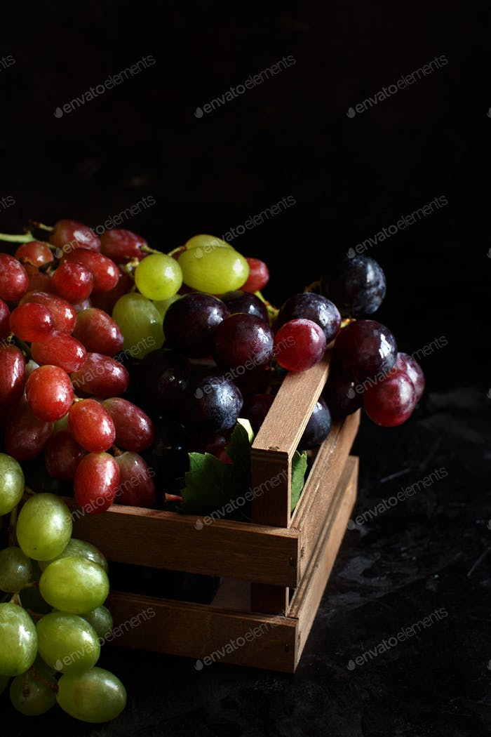 Three types of grapes on a dark Background