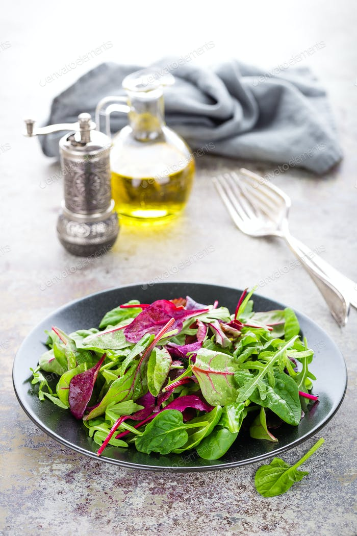 Healthy vegetarian dish, leafy salad with fresh chard, arugula, spinach and lettuce. Italian mix