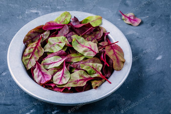 Fresh organic raw leaves of lettuce beets for salad on a dark  background.
