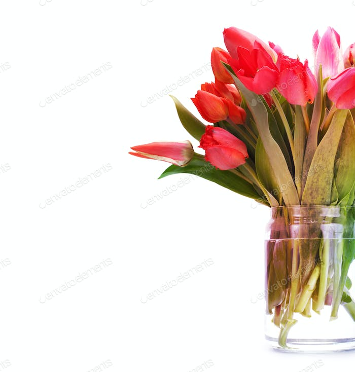 Bouquet of red tulip flowers.