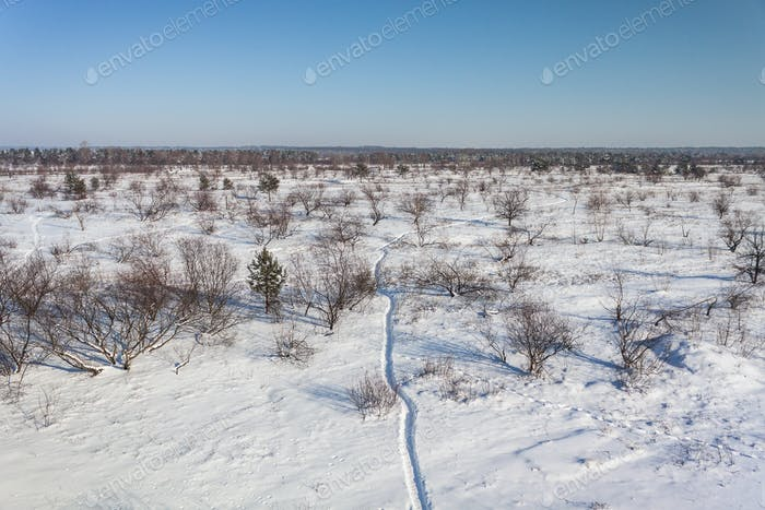 Snowy Landscape With Footpath