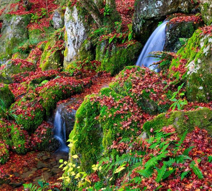 A small waterfall in autumn, Kyoto, Japan