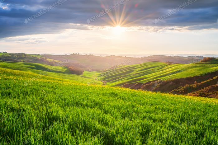Rolling Tuscany hills in the golden hour