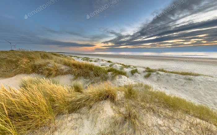 Landscape view of sand dune on the North sea coast