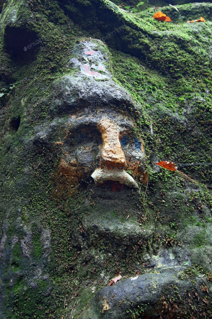 Face of dwarf covered by moss - old rock relief