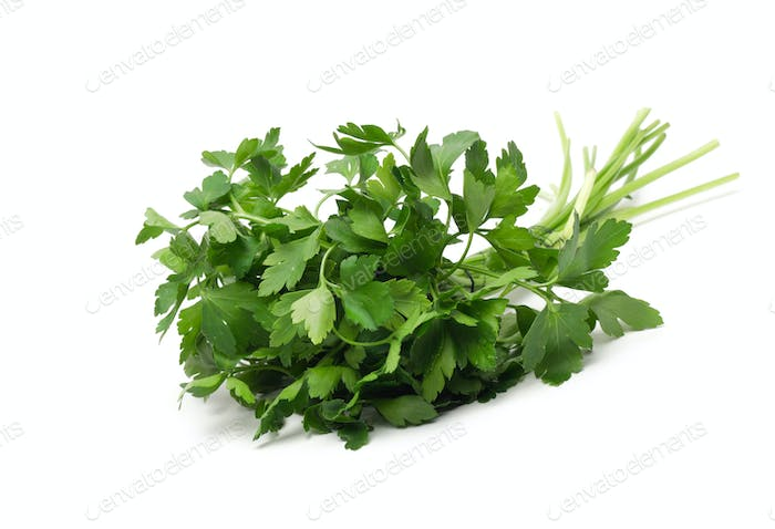 fresh green grass parsley dill onion herbs mix