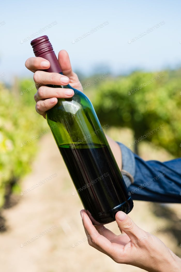 Female vintner holding wine bottle