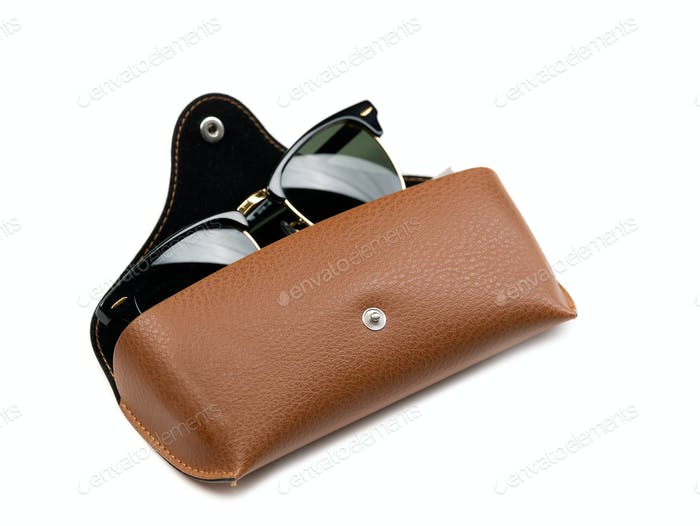 Fashion Sunglasses in brown leather case.