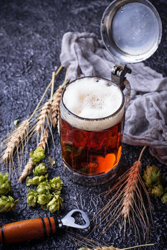 Mug of beer, hops and malt