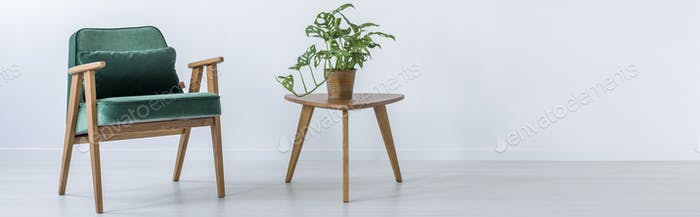 Chair and stool with plant