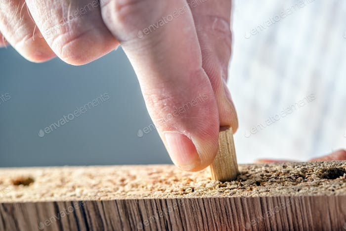 Man assembling furniture at home, hand with wooden dowel pins