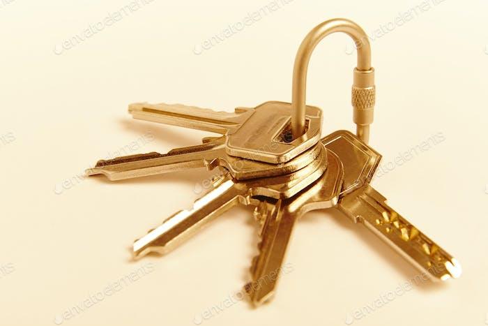 Schlüsselanhänger mit Schlüsseln in goldenem Ton. Mieten, kaufen. Wohnsitz